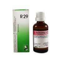 DR. RECKEWEG R29 - Theridon Vertigo Syncope Drops 22 ml