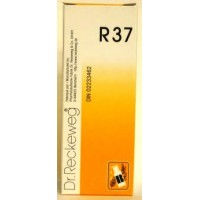 DR. RECKEWEG R37 - Colinteston Intestinal Drops 22 ml
