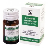 Dr. Willmar Schwabe Homeopathy - Berberis Pentarkan Tablets 20 g