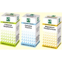 Dr. Schwabe Homeopathy - Schuessler Salts - Set of 12 Cell Salts
